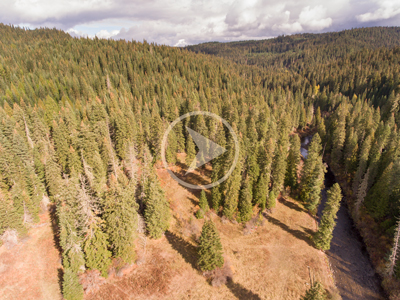 aerial photo of a meadow and creek in the Idaho hills